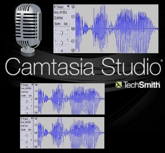 Video-Capture-Camtasia-Studio-Mono-Stereo